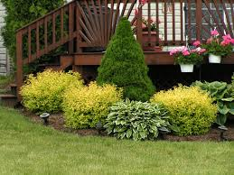 Attractive Shrub Ideas For Front Of House Garden Design Garden Design With  Landscape Amp Lawn Service Tree