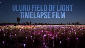 Field Of Light Uluru Free Field Of Light Timelapse Film