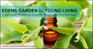 Edens Garden Comparison Chart To Young Living Edens Garden Vs Young Living Essential Oils Blends Cross