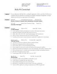 Apparel Merchandiser Sample Resume Creative Resume Template Best
