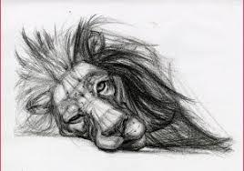 Pencil Drawings Animal Drawing Realistic Pencil Drawings Of