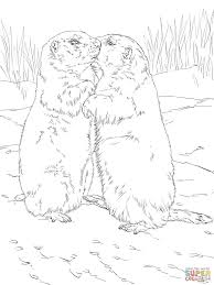 Small Picture Kissing Prairie Dogs Coloring Page Print Download Animal
