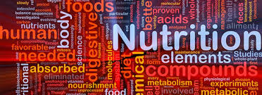 ms nutrition