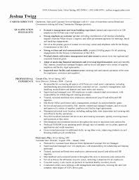 Store Manager Resume Examples Fresh Professional Retail Store