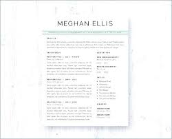 Free Professional Resume Samples This Professionally Designed ...