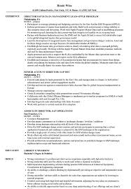 Director Resume Sample SAP Director Resume Samples Velvet Jobs 16