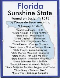 Florida Usa – Info Remembering Card Letters Postcards And