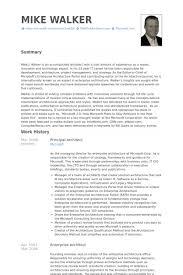 Principal Architect Resume samples - VisualCV resume samples database