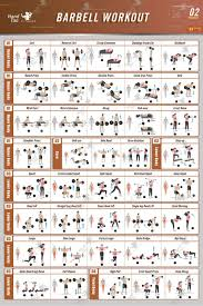 Sexercise Chart Bodyweight Exercise Poster Bodybuilding Guide Fitness Gym