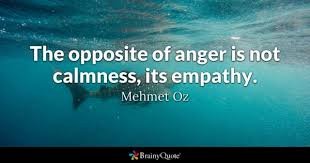 Empathy Quotes Classy Empathy Quotes BrainyQuote