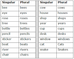 Singular And Plural Verbs Chart Course English Class 5 Topic Singular And Plural Noun