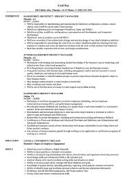 Salesforce Experienced Resumes Salesforce Project Manager Jobs India Resume Samples Velvet S