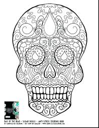 Skull Coloring Pages For Adults Free Printable Skull Coloring Pages