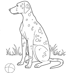 dalmation coloring page