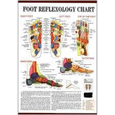 Top Of Foot Reflex Chart Foot Reflexology Chart Wall Map English Version Chinese
