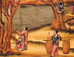 факты о Древнем Китае Интересные факты о Древнем Китае