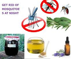 Beautiful How To Get Rid Of Mosquitoes