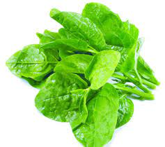 Hay ăn mồng tơi nhưng liệu bạn đã biết được tất cả công dụng của loại rau  tuyệt vời này - Sức khỏe - Việt Giải Trí