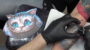 чеширский кот и алиса фото