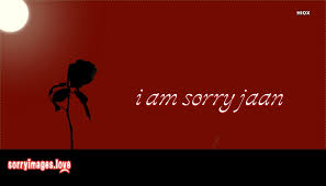 Sorry Wallpaper Images For Free Download Best Sorry Image Download