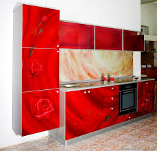 kitchen designs red kitchen furniture modern kitchen. Kitchen Cabinets Modern Red Rose-Photo Print Printed Glass Backsplash Designs Furniture