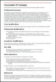 Key Skills Resume Mesmerizing In Resume Key Skills