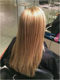 Hairstyles Blonde Hair Color Chart Enticing Best Light