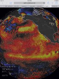 monster el nino robertscribbler