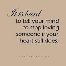 Quotes About Love And Life Lessons