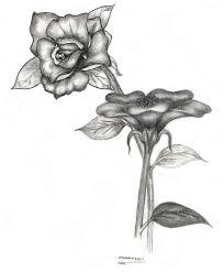 فنون الرسم بالفحم رسومات روعة