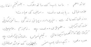urdu essay writing stephensons of essex urdu essay writing