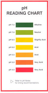 Ph Level Chart 7 Natural Ph Balanced Neutral Shampoo List With Ingredients