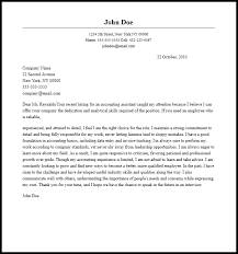 Professional Accounting Assistant Cover Letter Sample