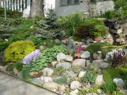 Small Picture What to do with a slope in the front yard a beautiful hillside