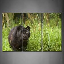 3 piece wall art painting black panther stop on grass picture print on canvas animal 4 on black panther animal wall art with 3 piece wall art painting black panther stop on grass picture print