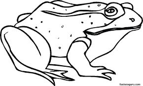 Free Coloring Pages To Print Elegant Lovely Frog Template Printable