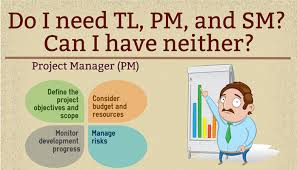 Define Team Leader Do I Need A Team Leader Project Manager And Scrum Master