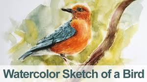 watercolour painting of birds watercolor painting bird demo you