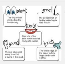 Second Grade Lesson Mentor Text Visual Imagery Betterlesson