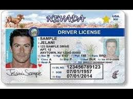 Nv Driver Test License Game-delivery -