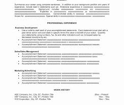 Resume With Accent Stunning Cv Resume Plural Contemporary Entry Level Resume 21