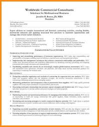 Executive Summary Resume Examples Awesome 4848 What Is Executive Summary In Resume Symbiosisartscienceorg
