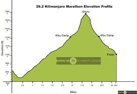 Inca Trail Elevation Chart What Does It Take To Race 26 2 Miles To 20 000 Feet