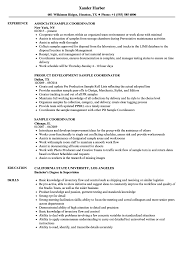 Resume Outlines Examples Sample Coordinator Resume Samples Velvet Jobs