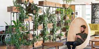 office greenery. office plants in an open work area greenery e