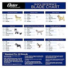 Dog Haircut Chart Andis Dog Clipper Blade Chart Achievelive Co