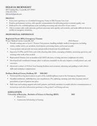 30 Professional Resume Examples Professional Correct Format Of A