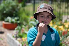 Stephanie Alexander Kitchen Garden Program Stephanie Alexander Kitchen Garden Meadows Primary School
