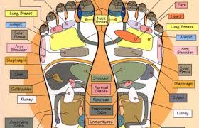 Eunice Ingham Reflexology Chart Foot Reflexology Muscle Therapy And Acupuncture