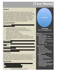 Resume Writing Digital Age Business Solutions